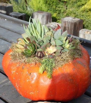 Roger's Garden, Corona del Mar CA, Halloween 2012