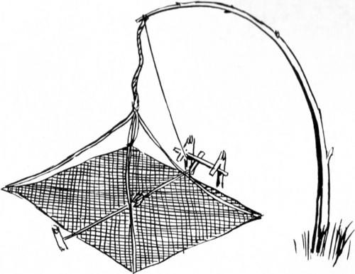 Basic Modern Snare Trap