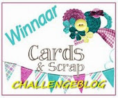 winnaarsbadge