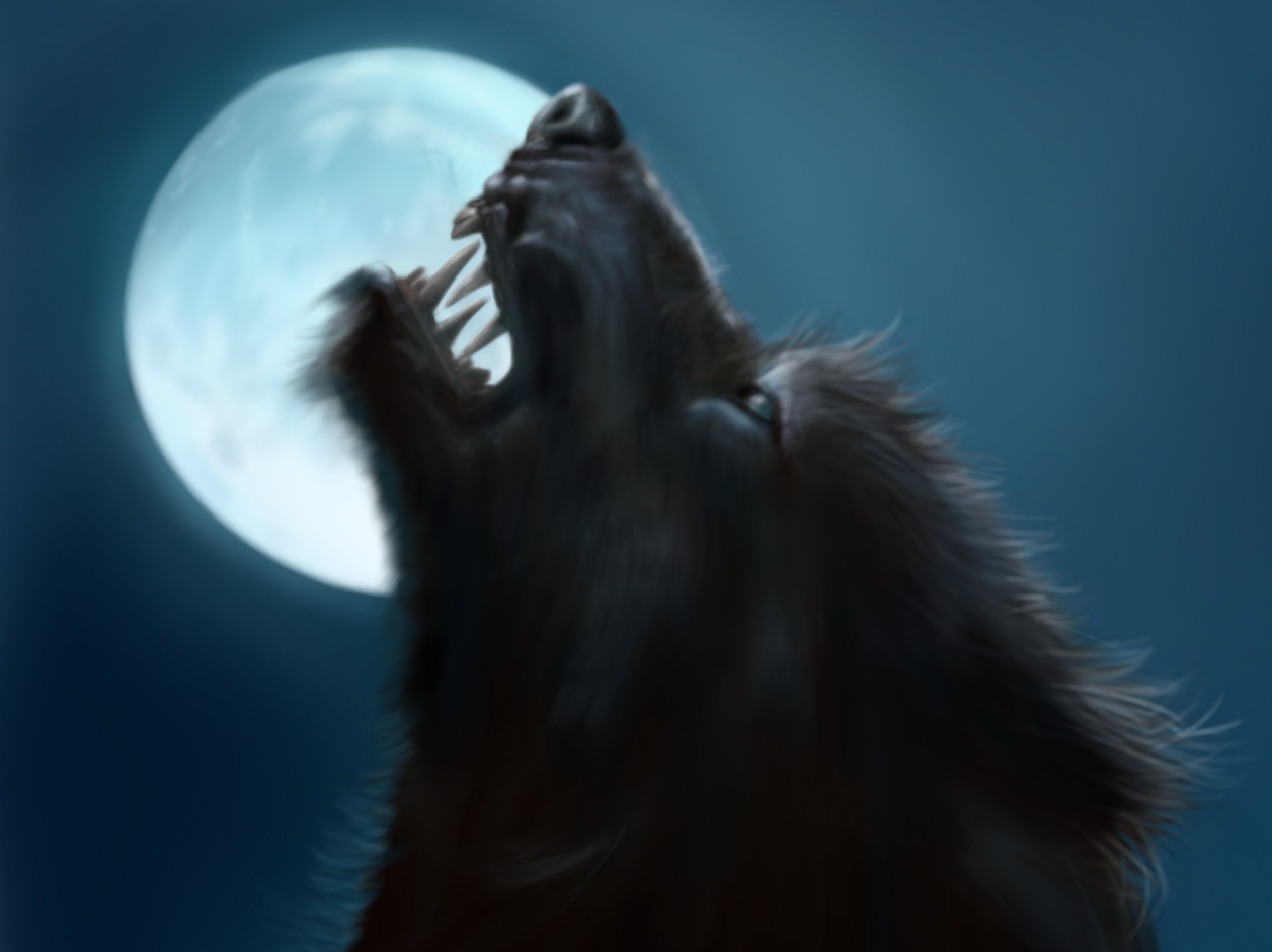 Full Moon Werewolf