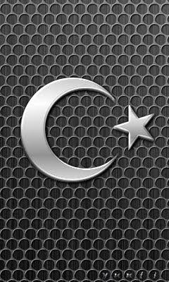 Metalik Bayrak
