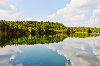 reflection of trees and clouds in a calm lake
