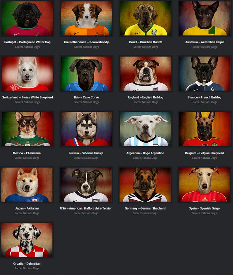 dogs brazil 2014