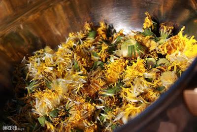 Dandelion syrup pitypangszörp