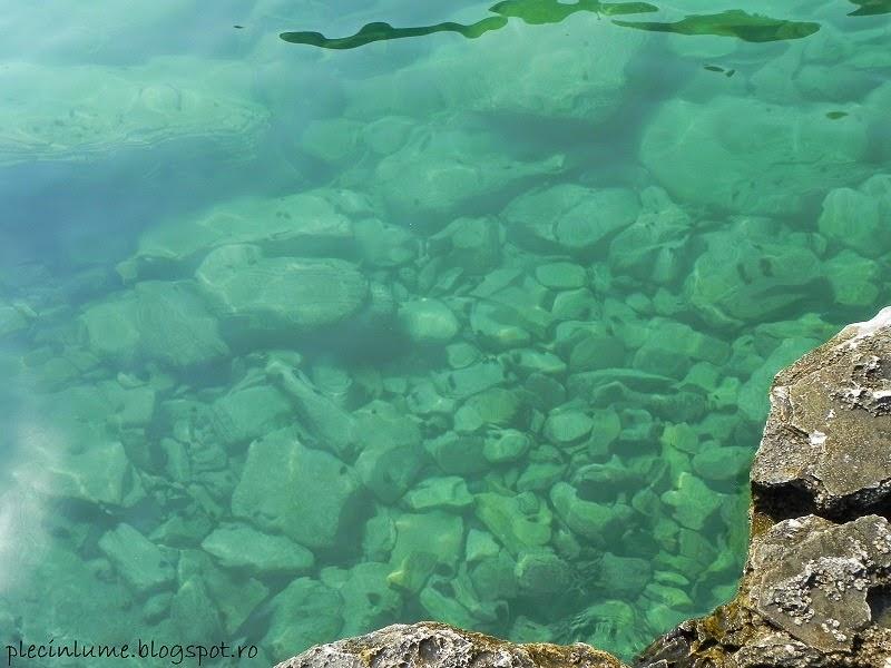 Apa din piscina Giola