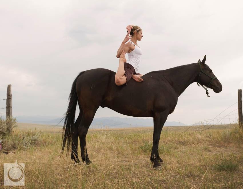Cowgirl yoga yoga on horseback riding the trend for Where to go horseback riding near me