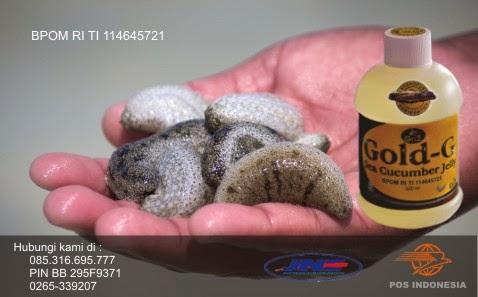 http://caramengatasipenyakit-maag.blogspot.com/2015/04/cara-konsumsi-produk-herbal-jelly-gamat.html