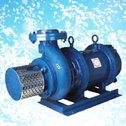 Crompton Greaves Open Well Pump OWK22SS (2HP) Online, India - Pumpkart.com