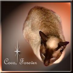 Coco  RIP