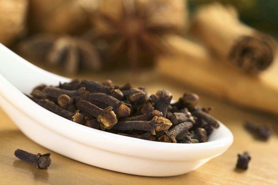 approvecourseowl: effective home remedies for bed bugs-ending