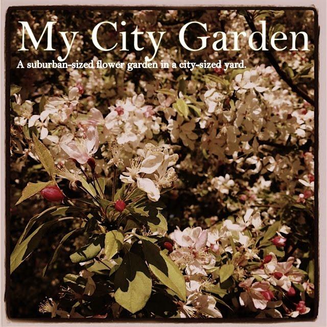My City Garden