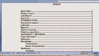 Cómo crear índice programado con tabla de contenido en word