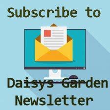 Daisys Garden Newsletter