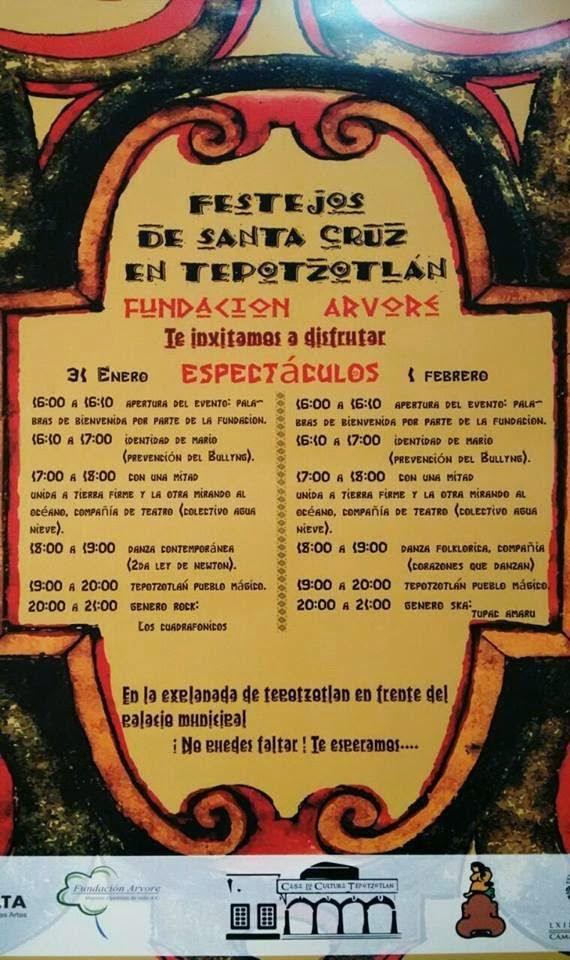 Programa de actividades del evento organizado por la fundación Arvore.