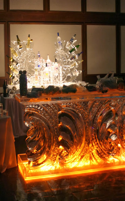 Isha Foss Events Vodka Ice Bar by Ice Art Virginia MOCA