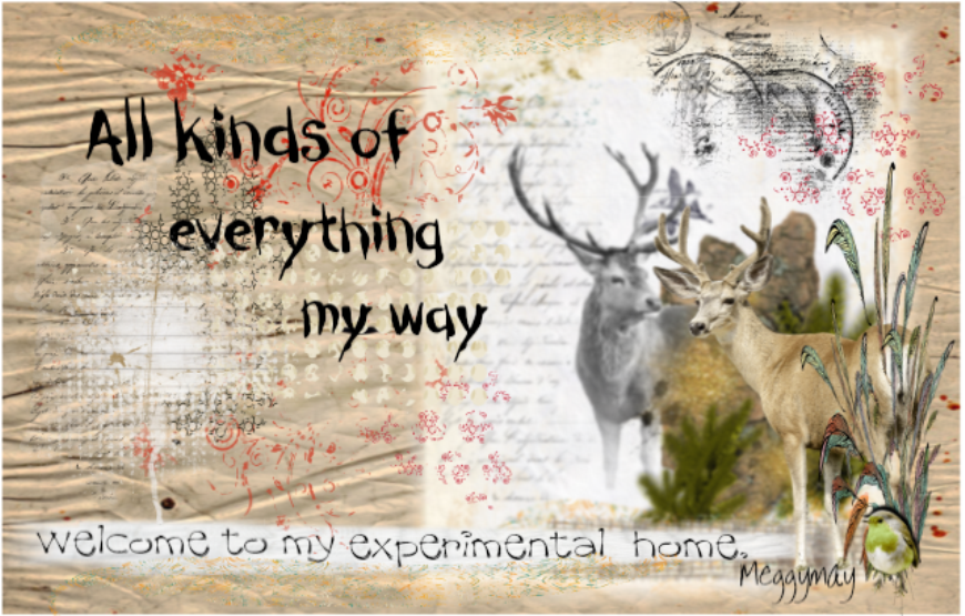 All kinds of everything, My way