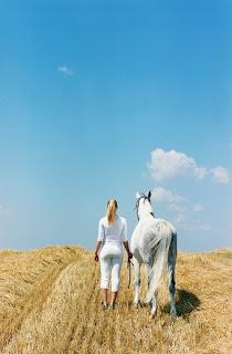 www.HorsesRefiningHearts.ca