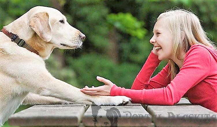 Você conversa com o seu animal de estimação?