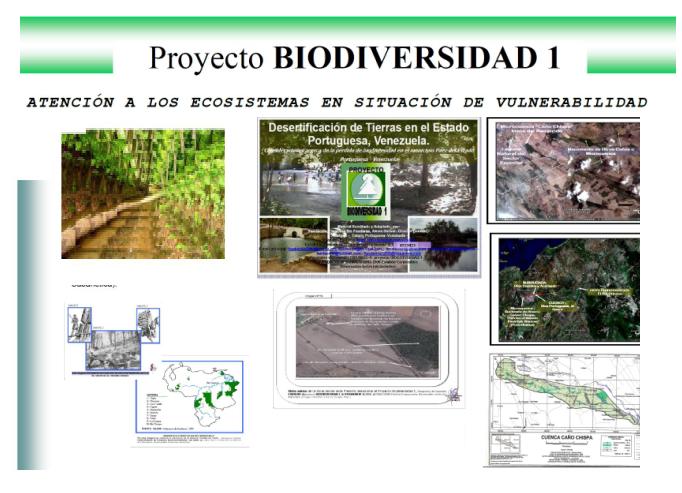 Proyecto Biodiversidad 1