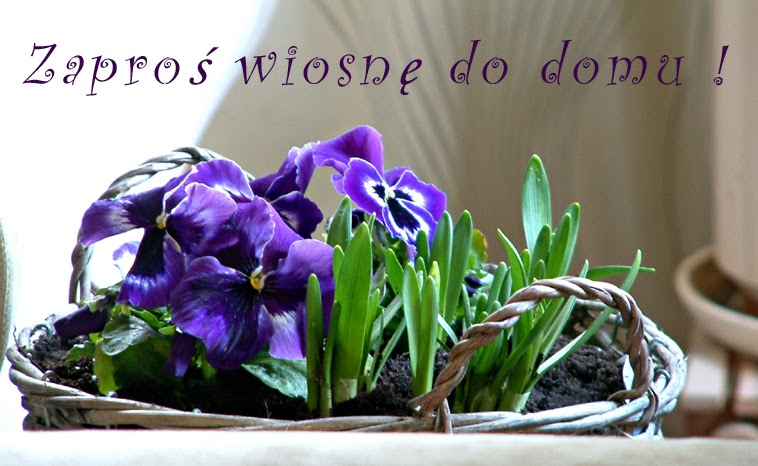 Zaproś wiosnę do domu ! Wiosenne kwiatowe dekoracje i wysiewy ziół do donic na balkon.