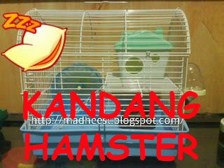 Kandang Hamster