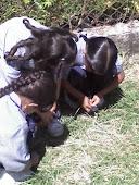 Generando conciencia ecológica en nuestros(as) niños(as)