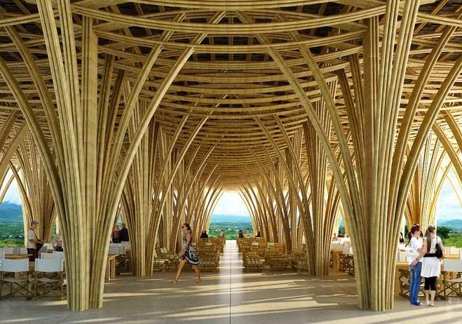 Aprovechemos el bambú