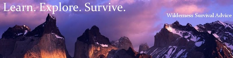 Learn. Explore. Survive