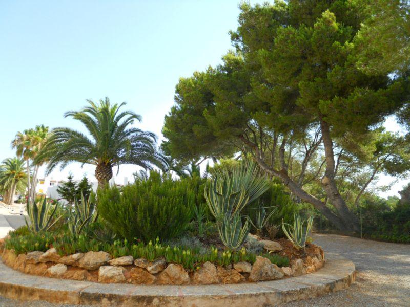 Arte y jardiner a jard n mediterr neo for Diseno de jardin seco