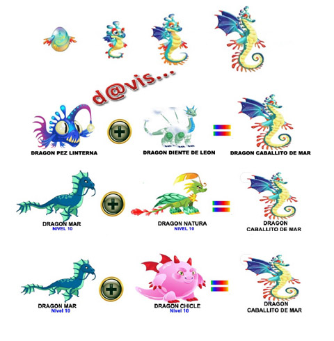 Como obtener Dragón Caballito de mar