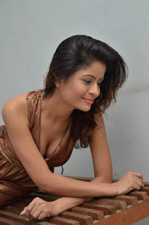 Actress Gehana Vasisth Stills in Sleeveless Long Dress 25286