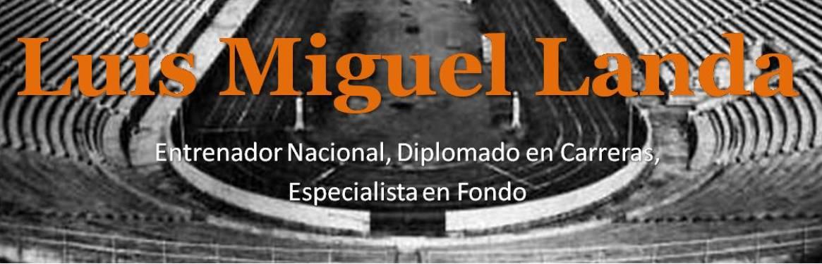 Luis Miguel Landa