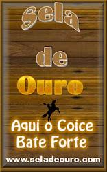 RÁDIO SELA DE OURO !!!!