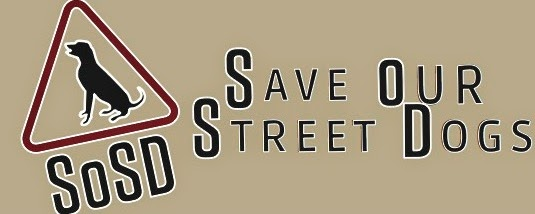 Save Our Street Dogs