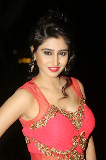 Shamili Transparent Red Saree Latest Unseen Pictureshoot (11).JPG