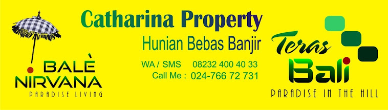 Catharina Property