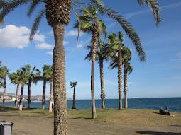 Malagueta Beach