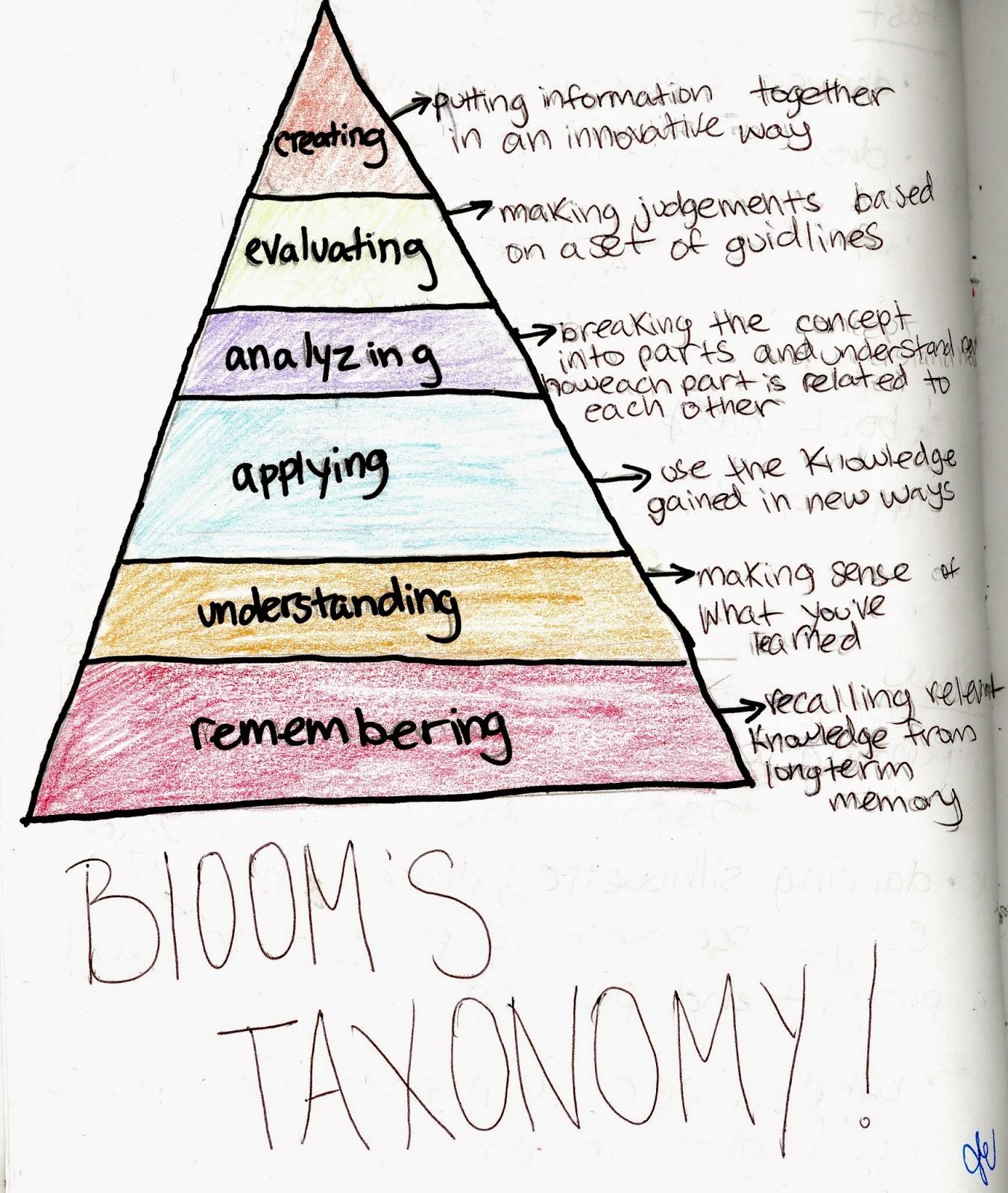 Taxonomy Examples