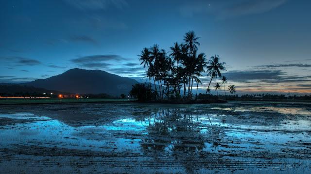 Malaysia Evening Landscape