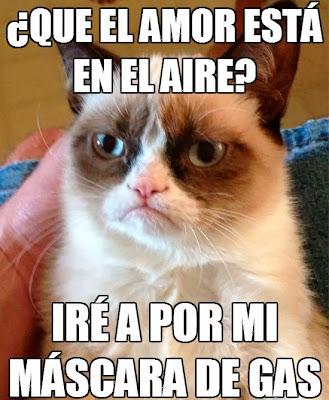 Grumpy cat en español - El gato gruñón: 'El amor esta en el aire'