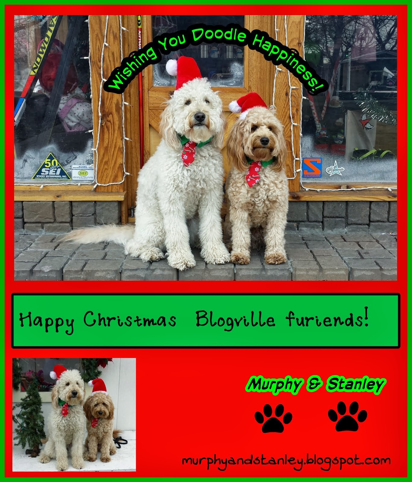 xmas card from Murphy&Stanley