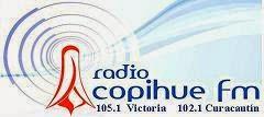 Logo 2010-2014