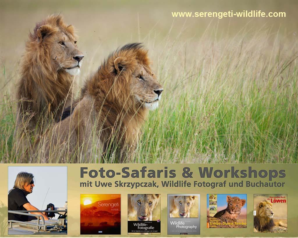 Fotoreisen - Foto Safaris