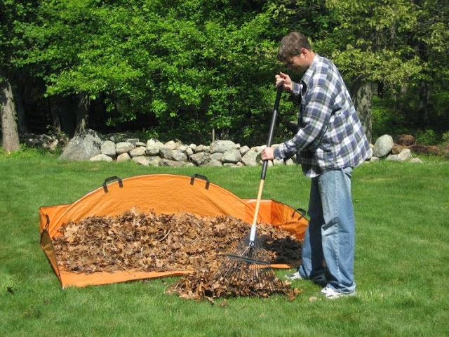 Yard Cleaning Tools and Gadgets (10) 3