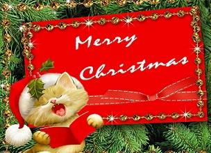 Beautiful|| Christmas images,pics,wallpapers,pictures,messages ...