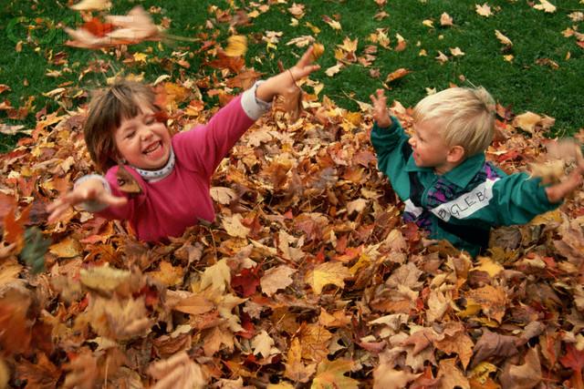 Autumn Activities8