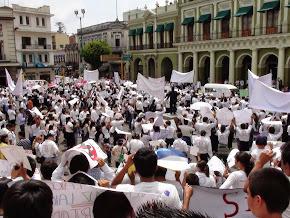 Las manifestaciones.