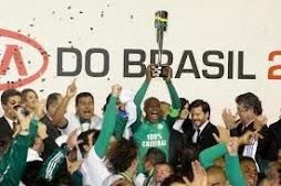 Palmeiras campeão da Copa do Brasil 2012