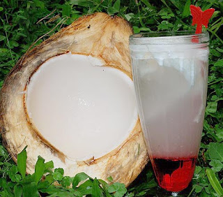 coconut water ice
