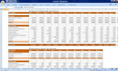 Costos mensuales y anuales